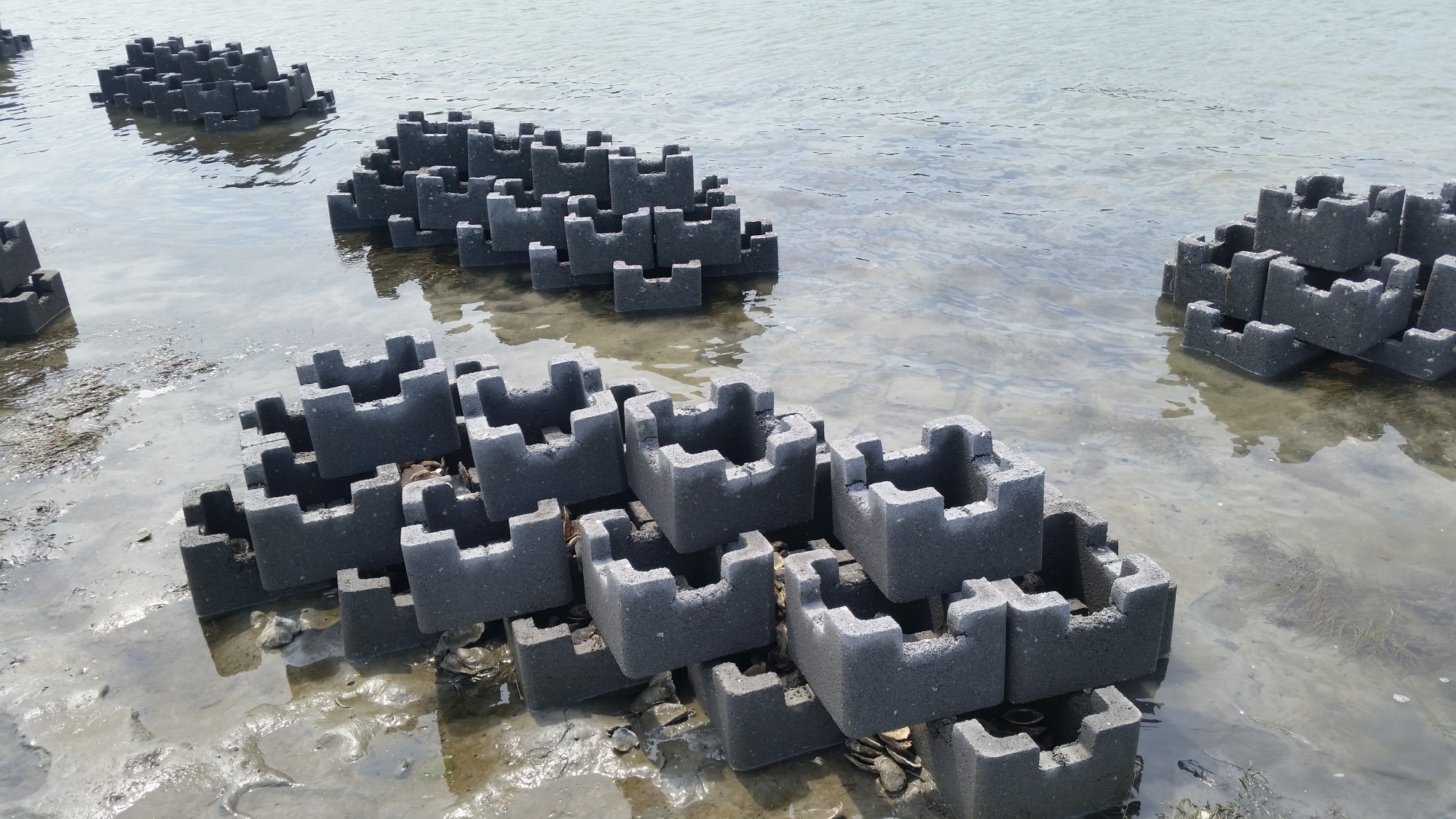 Oyster Castle Living Shoreline Project with the VMRC (4)